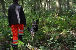 130916 Faro Rettungshundearbeit